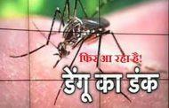 डेंगू से निबटने के लिए हैआसान घरेलुनुस्खे !